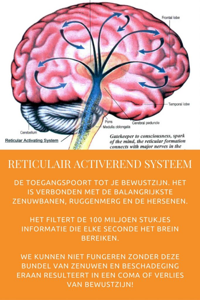 Reticulair Activerend Systeem